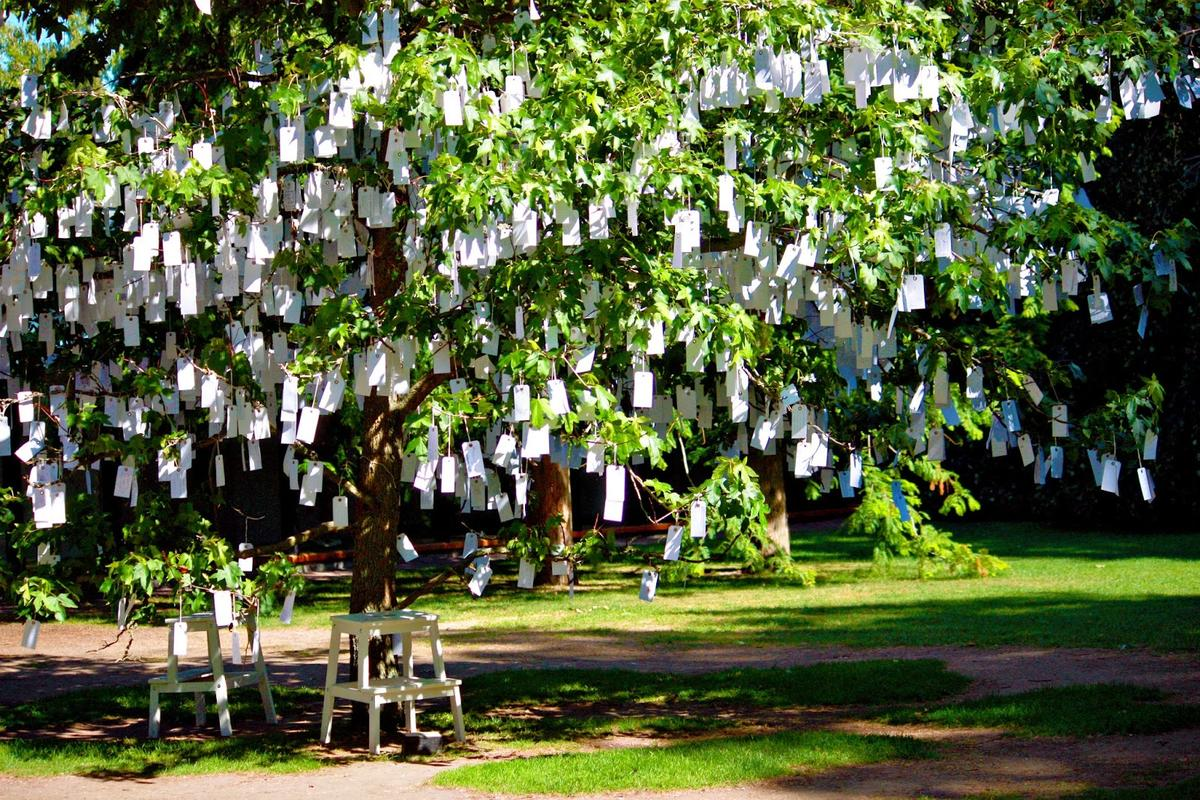 Yoko Ono, Wish Tree, Louisiana 2013