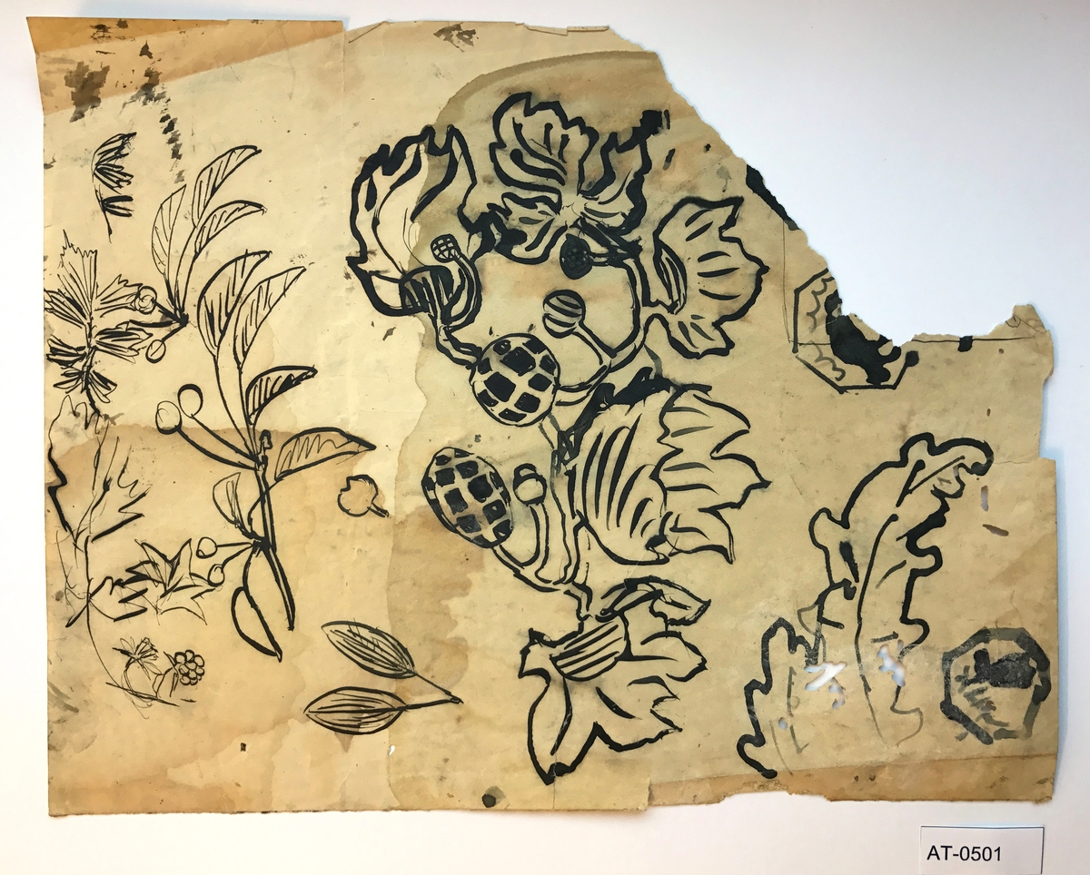 Einsidig skisse (ark frå skissebok): Ant. studie av ulike bærplantar. Kanskje relatert til vevkartongane han lagde.