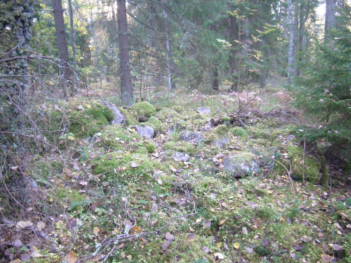 Arkeologisk utredning, stensättning RAÄ 96:1, Rimbo-Tomta, Rimbo socken, Uppland 2015