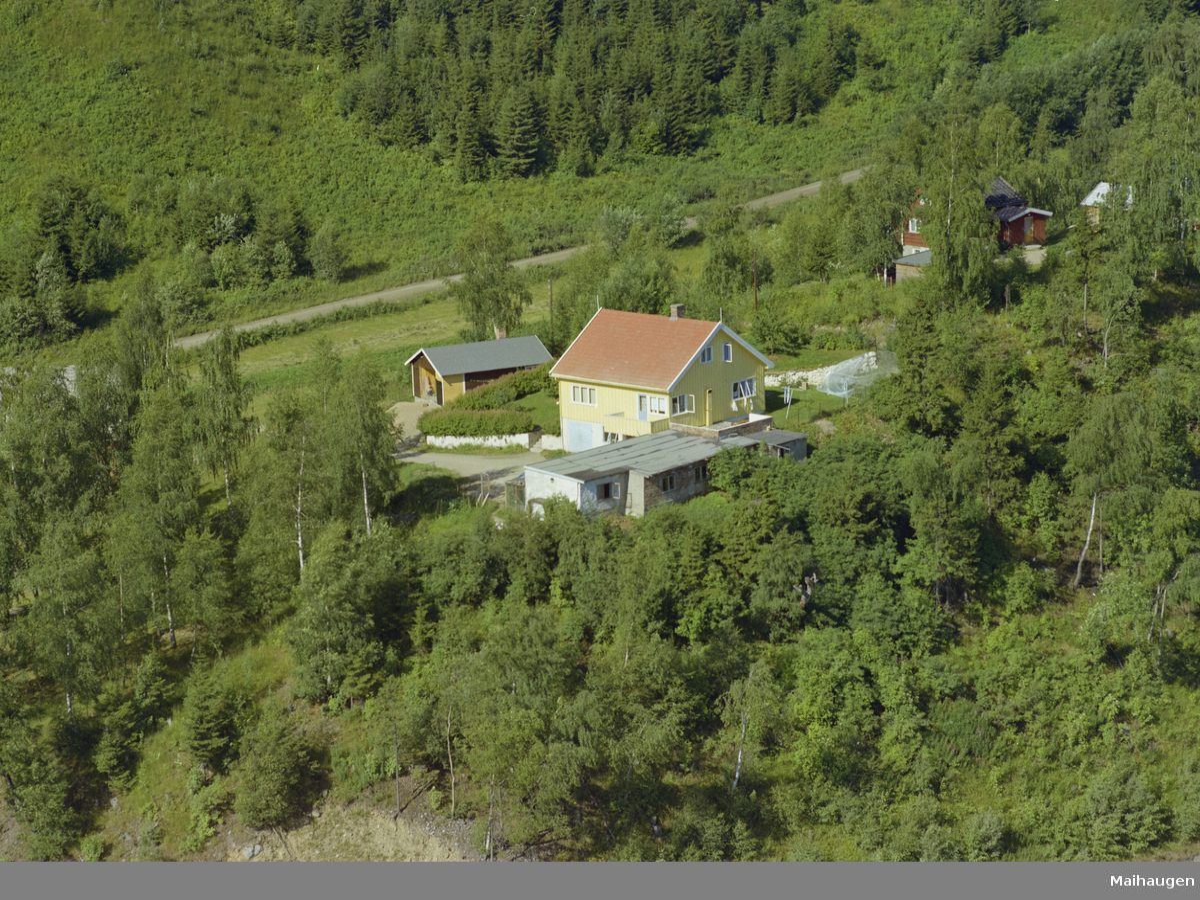 Bolighus i Kastrudvegen, Vingnes. Kulturlandskap, bygninger, skog.