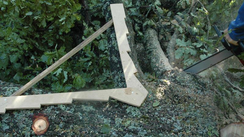 Materialene til rekonstruksjonen hentes i skogen.