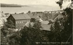 Postkort med motiv fra Gjøvik.