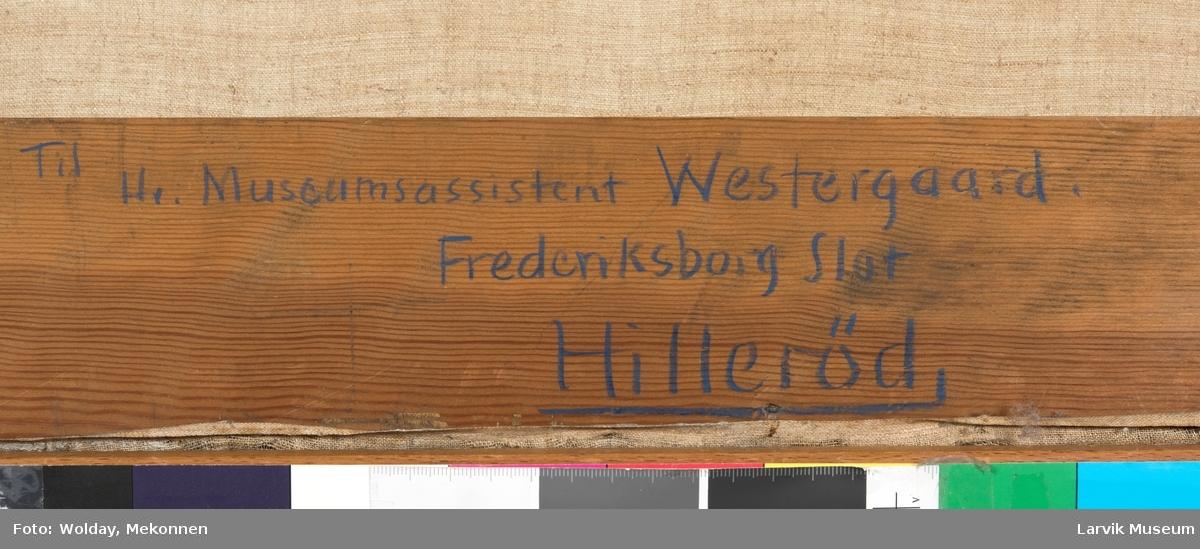 Ulrik Fredrik Gyldenløve i mørk pelskantet kappe, elefanorden og marskalkstav i venstre hånd. bak greven hode av angivelig væpner, holdene gravenns hjelm.