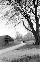 Biblioteket mot slottsparken.Stadsbiblioteket: Efter en ark