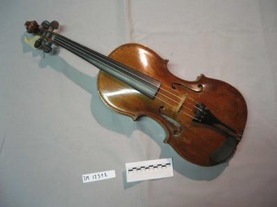 Fiolin.jpg