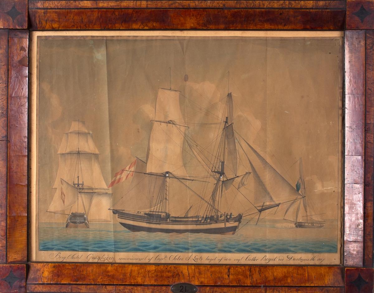 Skipsportrett av briggen ENIGHEDEN sett fra siden og akter, i det den blir kapret av den britiske kutteren BENGAL utenfor Dartmouth. ENIGHEDEN fører dansk flagg med Christian 7 (C7) i midten.