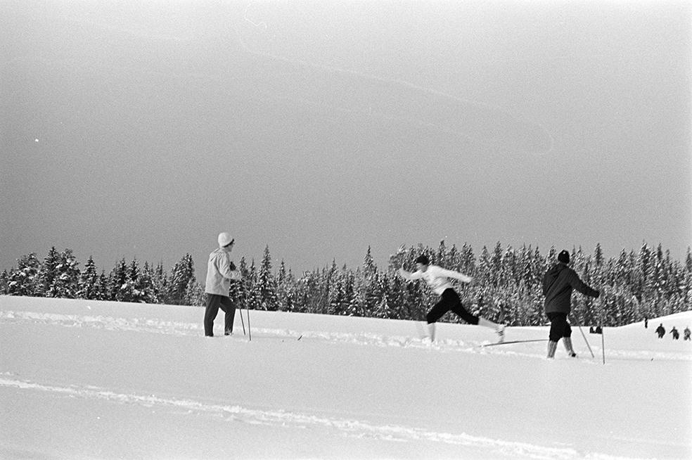 Alujordet, Hamar/Furnes. Hedmarkstoppen, vinter, skiløpere, langrenn.