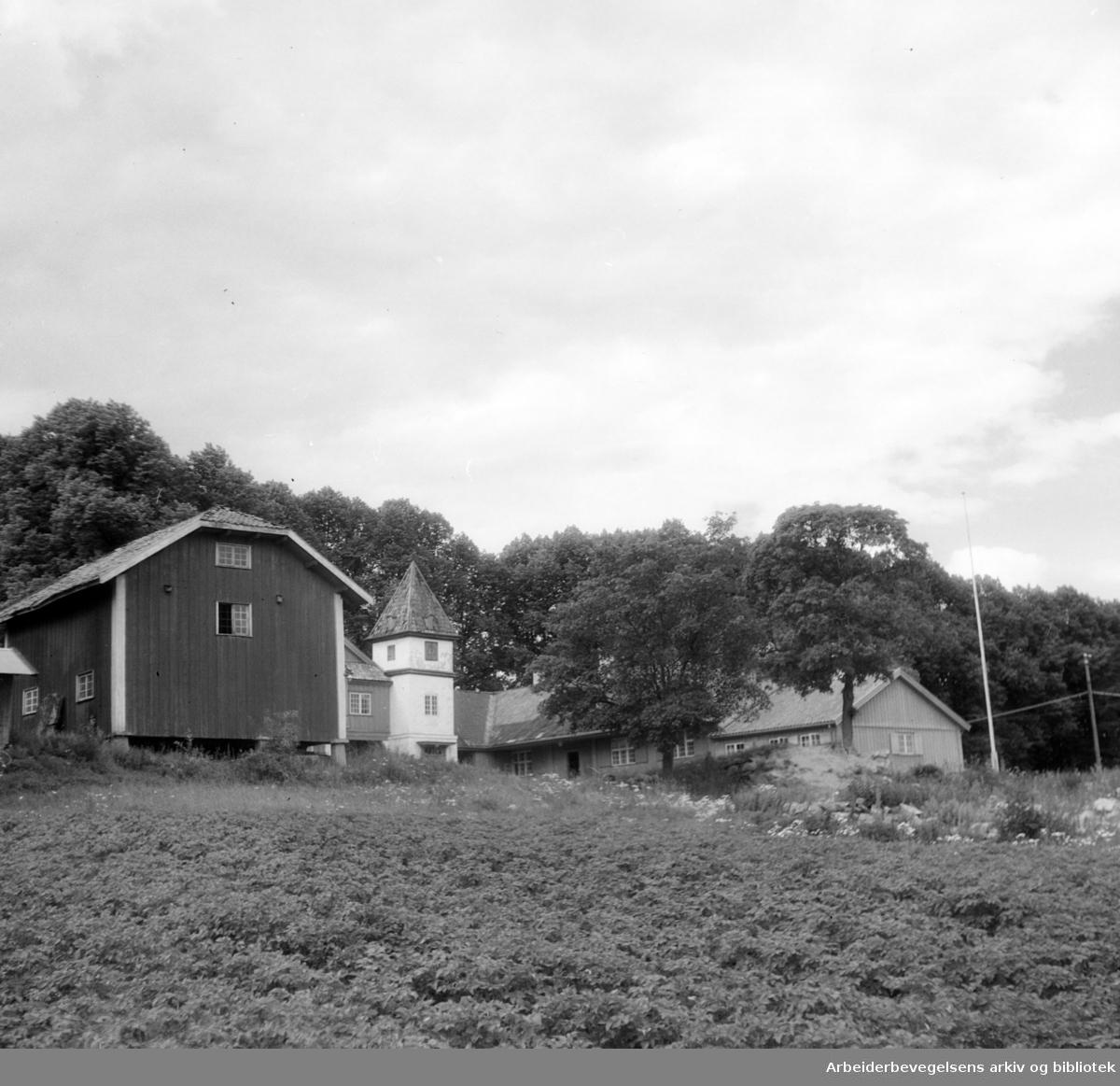 Nordre Skøyen Hovedgård. Juli 1948