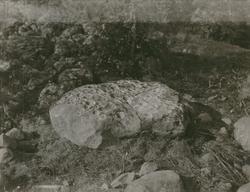 Foto omkring 1870. Gåva av bankdirektörn G.Björkman, Stockho