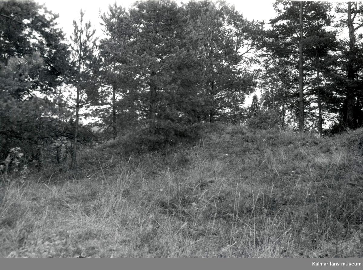 Gravfält foto från öster fornvårdsobjekt nr 141.