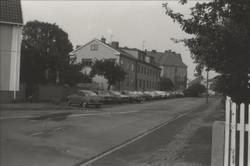 Körsbärsträdet i med angränsande bebyggelse utmed Stensöväge