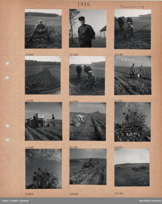 Motiv: Kullaberg, porträttbild av ung man i arbetskläder och träskor som sitter och vilar på en plog på en åker, porträttbild av äldre man i skinnjacka och skärmmössa, en man sitter och vilar på en plog med två förspända hästar, plöjd åkerremsa, två pojkar bär en korg på en åker, traktor med kärra på åker, arbetare, kvinna plockar potatis i en korg på en åker, buske med upphängda kokkärl(?), en man kör traktor på en åker, skördad åker, traktor, hästdragen kärra.