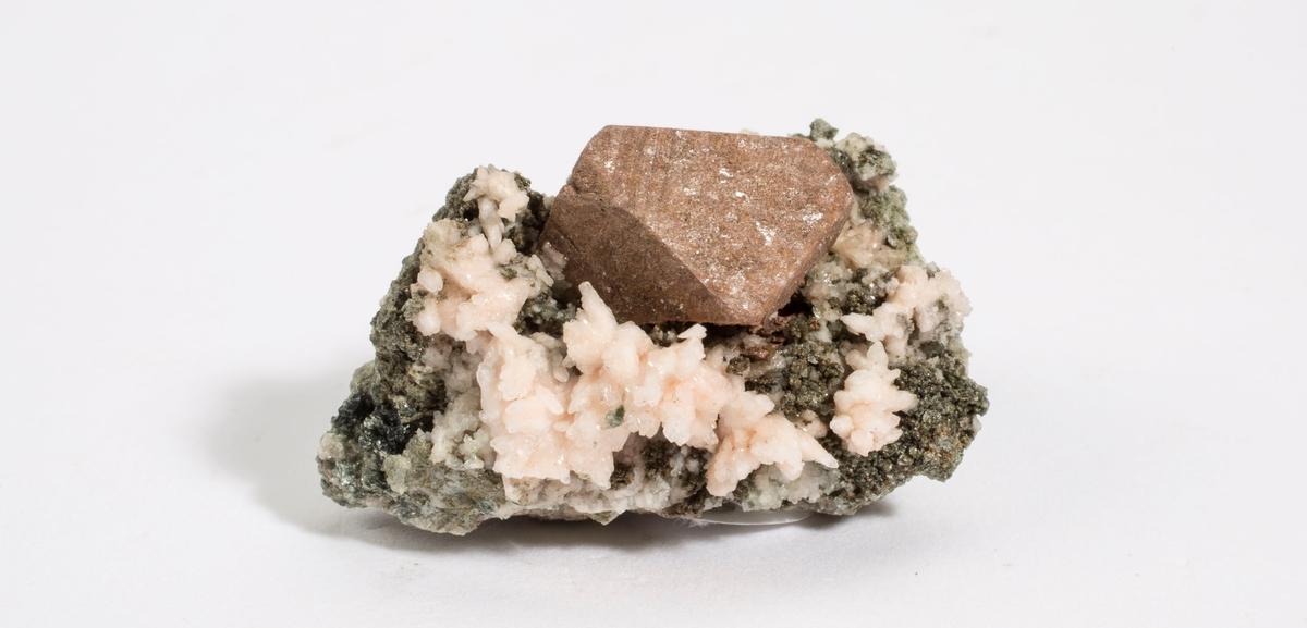 Titanitt pseudomorf, lys brun, etter ilmenitt. Enkel xl på matriks, albitt ++