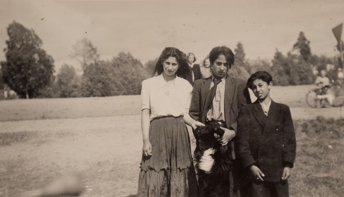 Två romska pojkar och en flicka står vid en väg med sin hund. I bakgrunden syns nyfikna betraktare. Fotografiet är sannolikt taget i trakten runt Sandviken, antagligen år 1947.