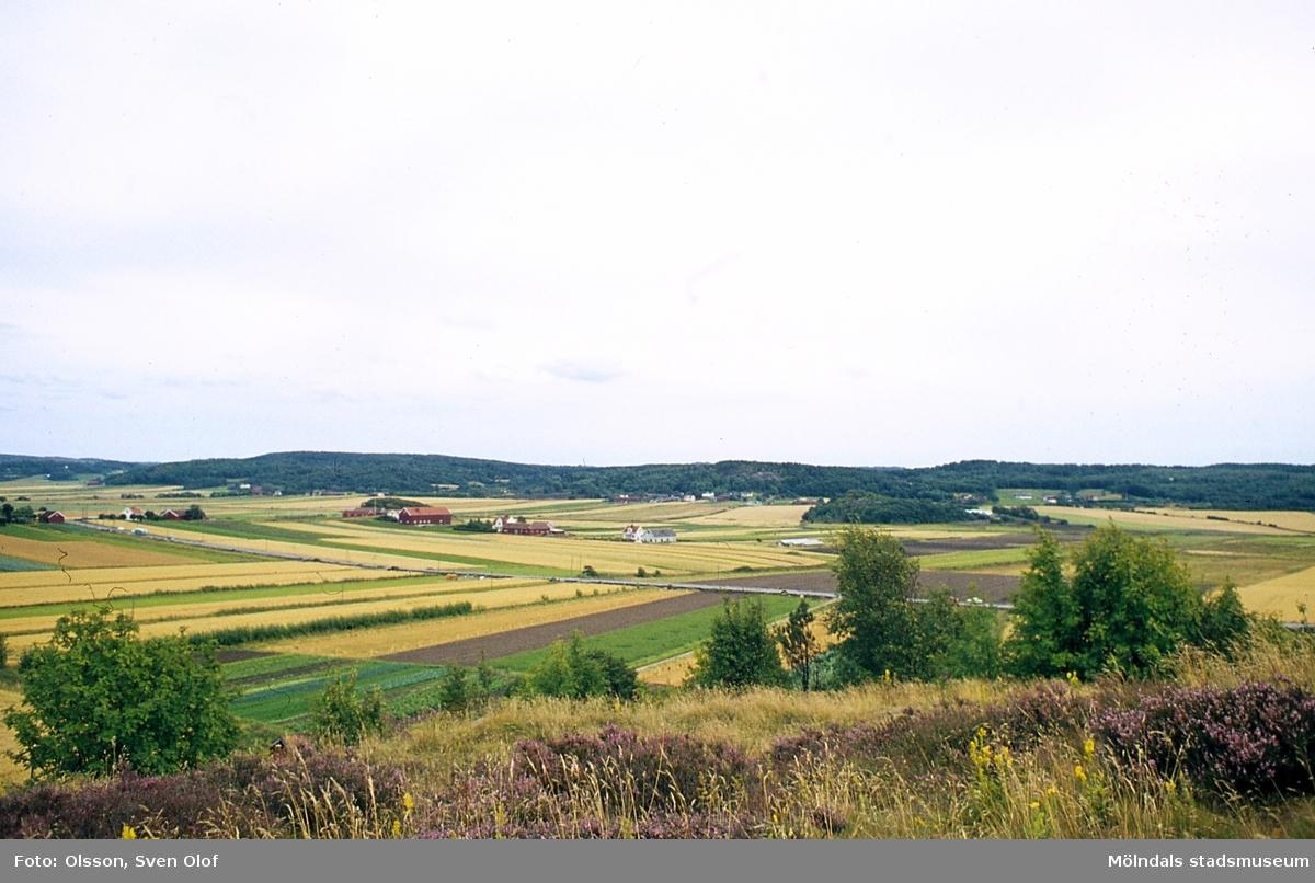 Vy över Fässbergs by i Mölndal, år 1965. F 2:21.