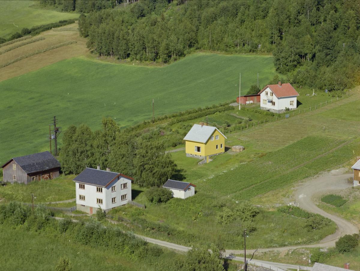 Øyer, Tretten østside. Klukkerstua eid av Øyer kommune, klokker og lærer Sigurd Bjørnstad. Stor, hvit toetasjes bygning med et grått og ett hvitt uthus. Veg nedenfor,kjøkkenhage og dyrket mark rundt. Løvskog i overkant og to privatboliger.