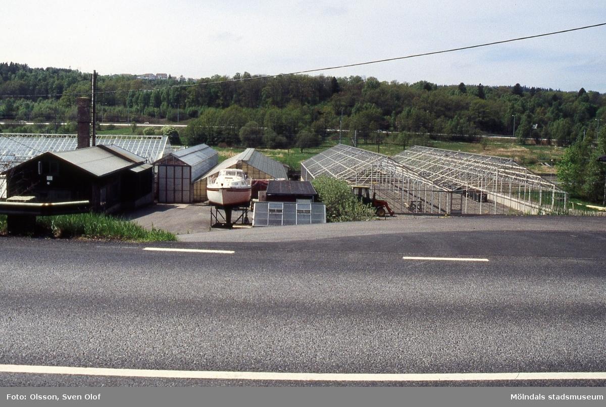 Sandbäck i Mölndal, år 1995. Ekenbergs bygger ett nytt växthus.
