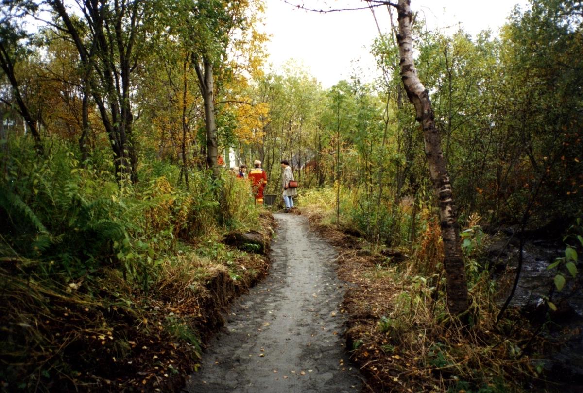 Anlegg av Taraldsvikelva landskapspark 1994 (nedenfor Snorres gate). Anlegg av gangsti vest for elva. Fra venstre ukjent, Svein Steinhaug, Rønnaug Indregard.
