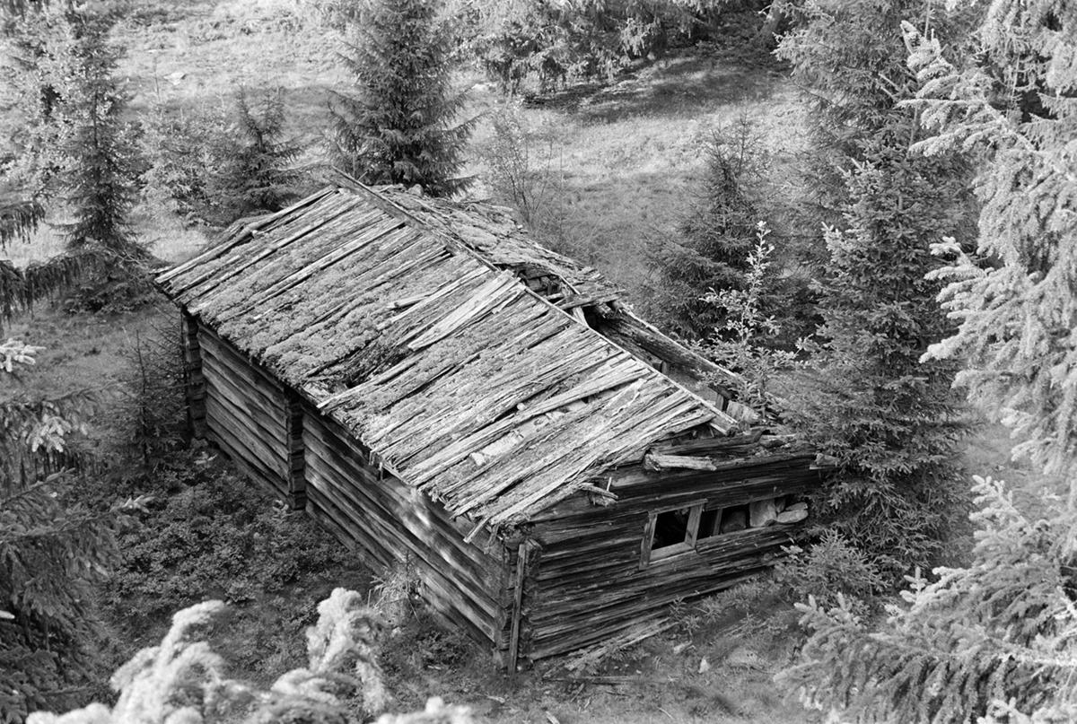 Veslesetra, Mæhlum, Romedal allmenning, seterhus, forfall, seterbruk på Hedmarken,