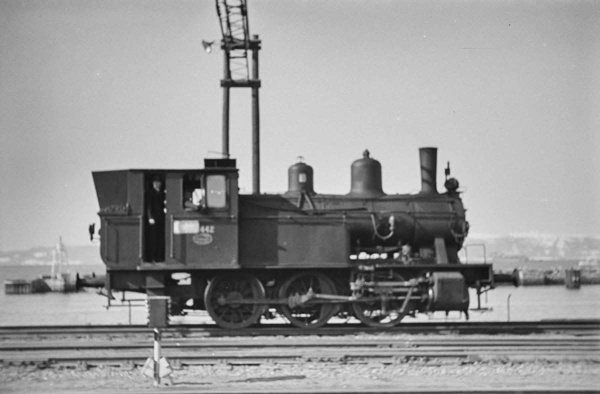 Damplokomotiv type 23b nr. 442 i skiftetjeneste på Trondheim stasjon.