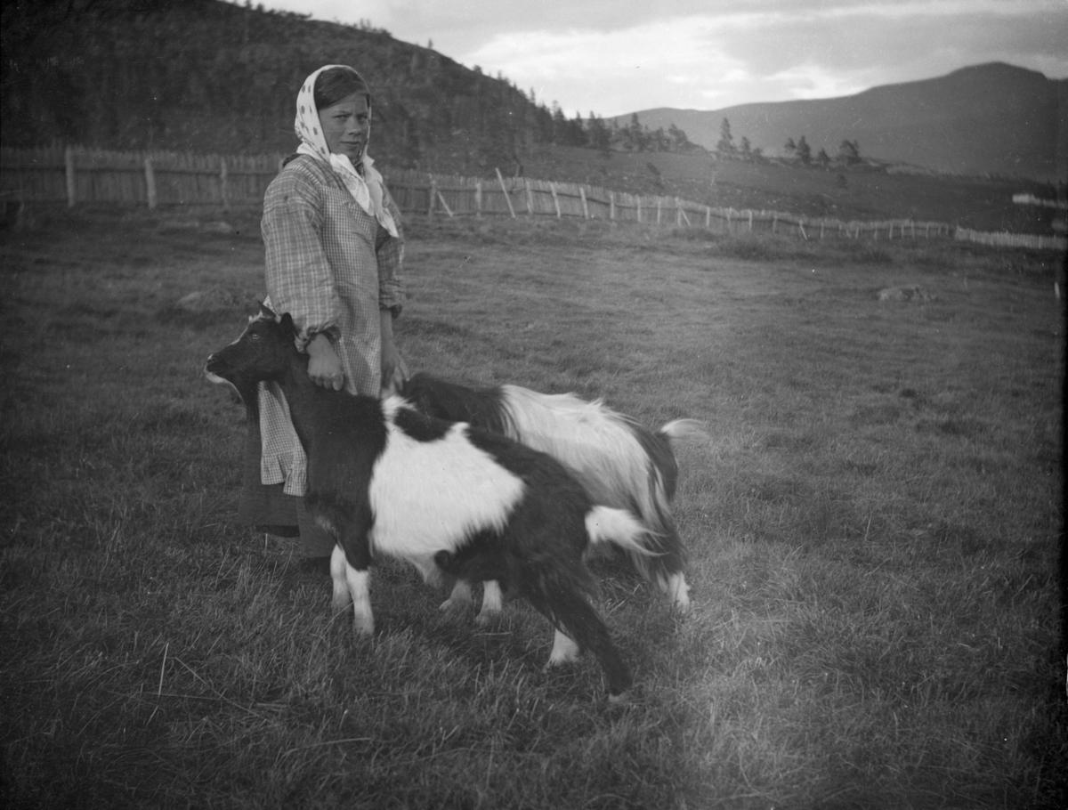 Kvinne med to geiter