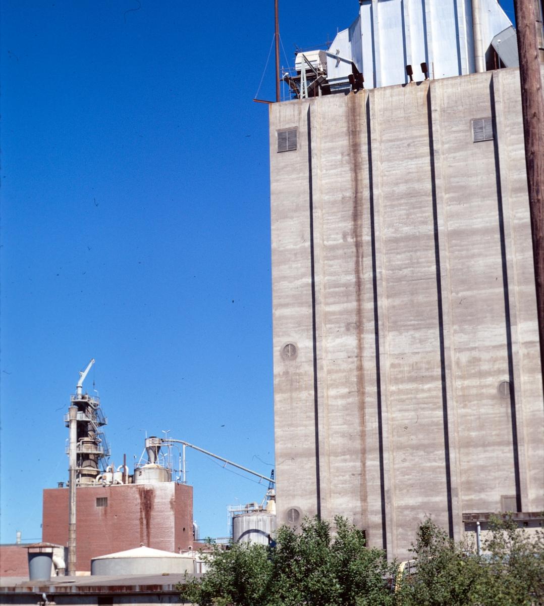 Norrsundet sågverk och massafabrik, sulfatfabrik