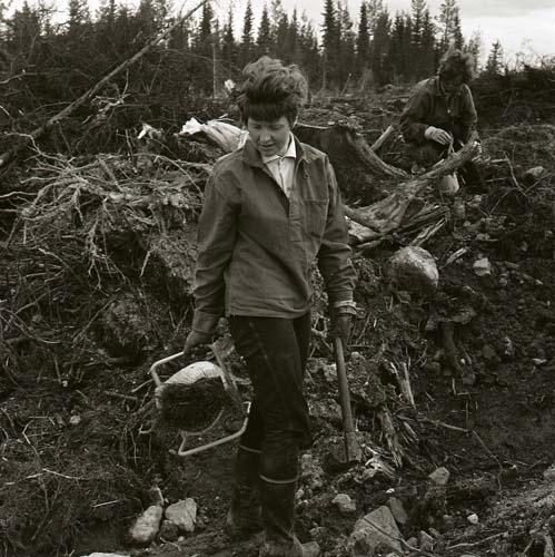 Två kvinnor planterar skog 1969.