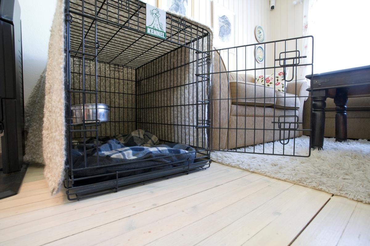 Hjemme hos hunden Emmy. Hundebur med teppe over i stuen.