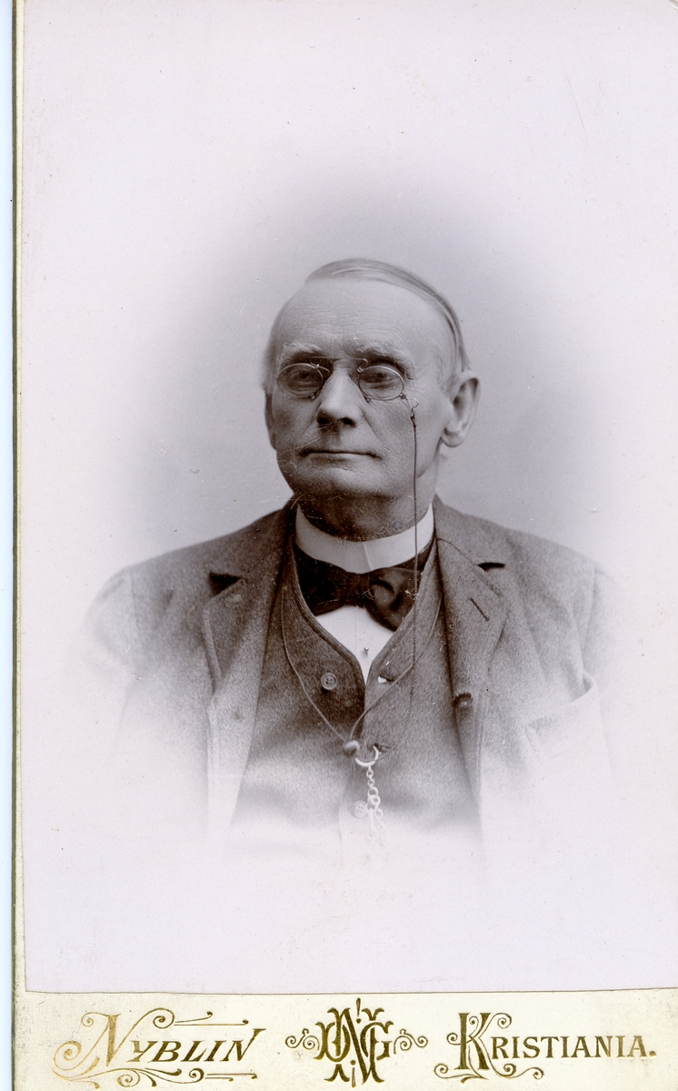 Portrett i halvfigur