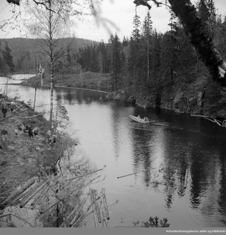Østmarka. Mai 1949