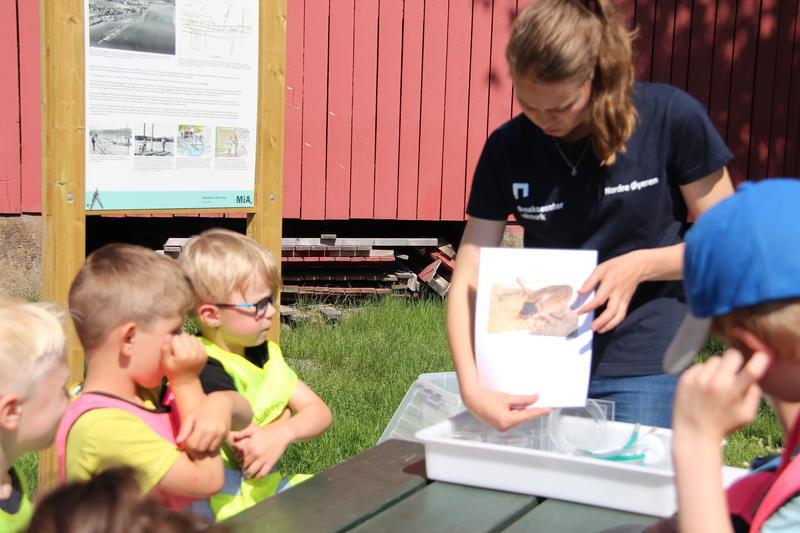 Foto av naturveileder som viser barn et bilde av insekt