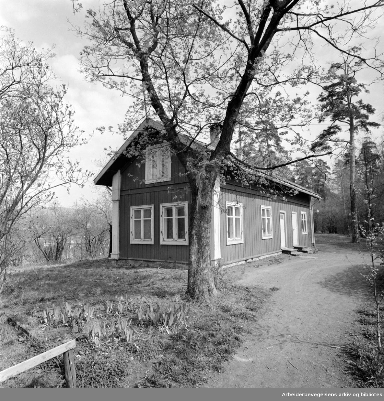 Hengsengen kafé. Mai 1975