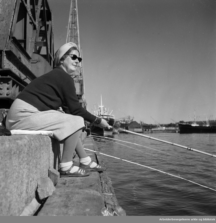 Havna. Bryggefiskere. September 1952