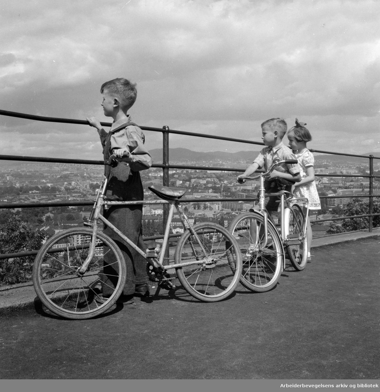Ekeberg. Utsikt fra Ekeberg. Juni 1954