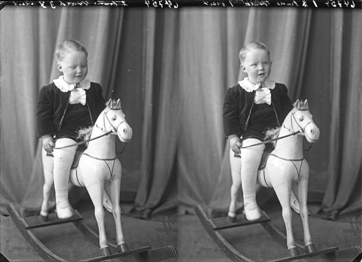 Portrett. Ung gutt på en hvit gyngehest. Bestilt av Johs. Birkenes. Solvang.