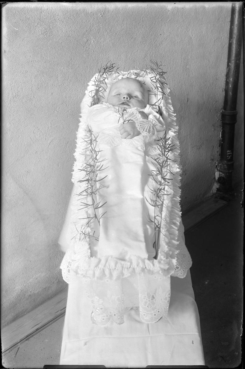 """Nils Erik Strandberg fotograferad i sin kista efter att han avlidit och förberetts för begravning. I fotografens egna anteckningar står det: """"Nils Strandbergs pojk som lik""""."""