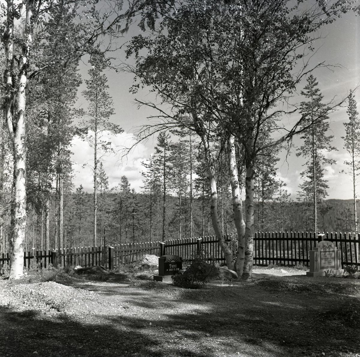 Två gravstenar vid Rullbo kyrkogård i Los, augusti 1950.