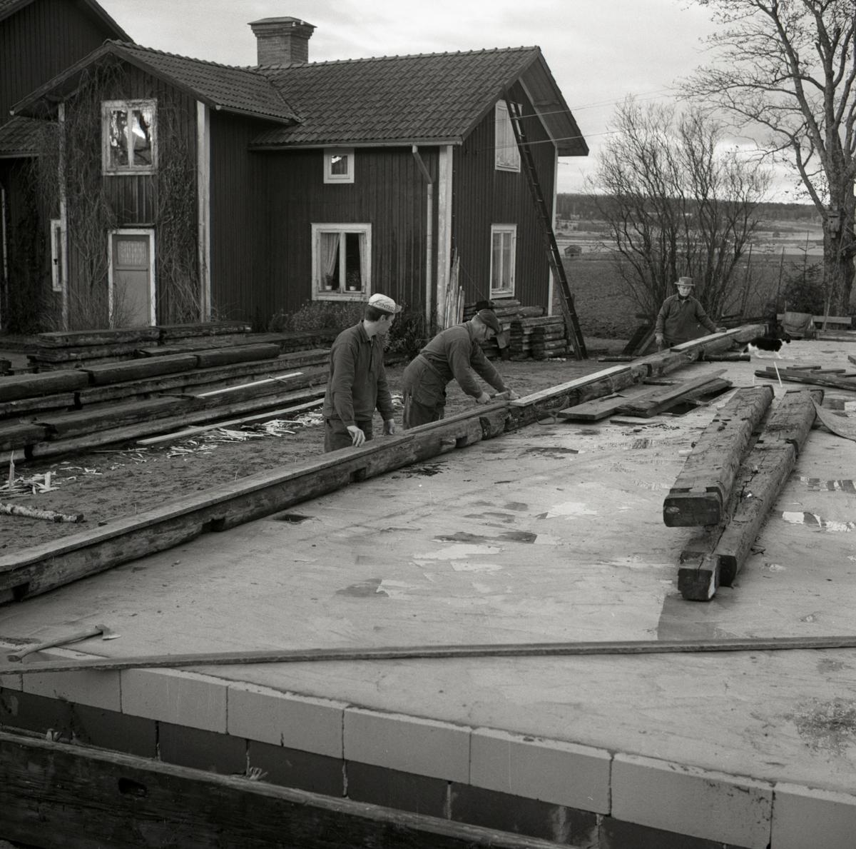 Ett bostadshus av timmer monteras vid gården Sunnanåker, 1967.