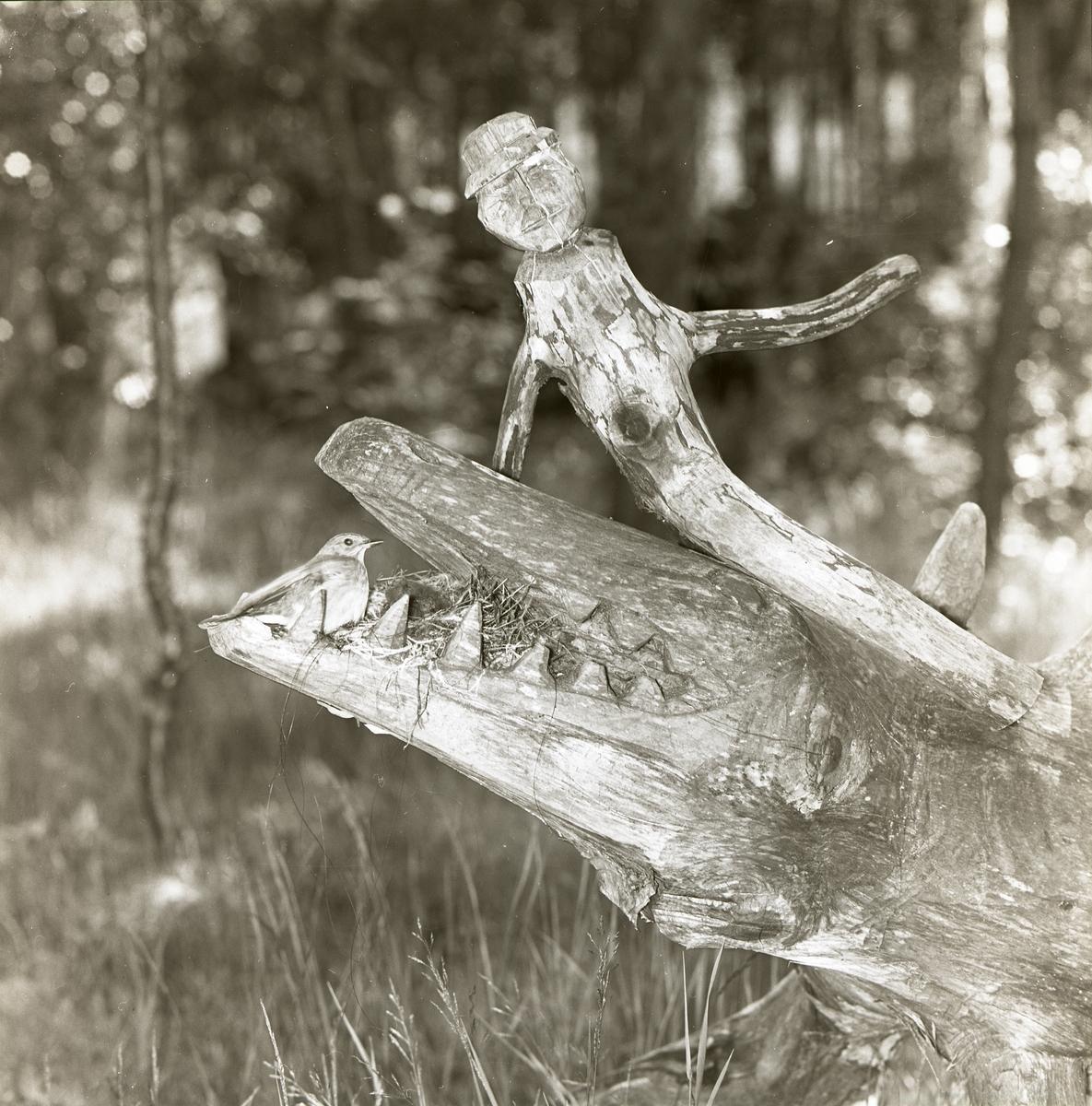 En träskulptur i form av en krokodil med en fågel i gapet vid Järnblästen, 1 juli 1961.