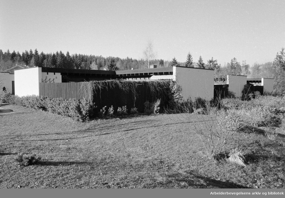 Ammerud. Alundsjø borettslag. 23. oktober 1985