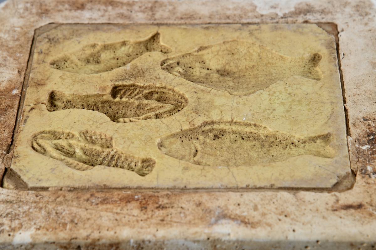 Rektangulær gipsform med avrundete hjørner. Formmotivet er fem halve småfisk av ulike slag. fiskene er ca. 6-9 cm. lange.