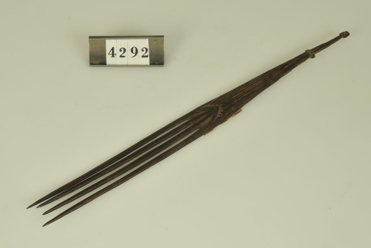 Påskrift: Nya Guinea                1884  Axel Åström