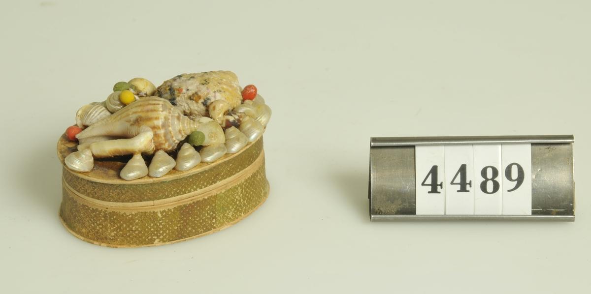 Av papp med påklistrade snäckor på locket. Oval, 6 x 4,3 cm. Innehåller ett fossil slipat i äggform.