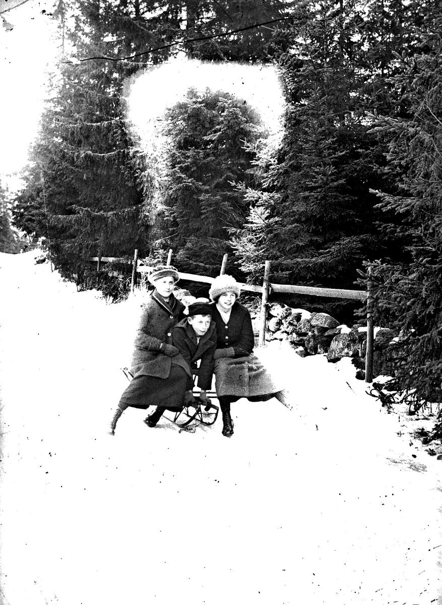 Från vänster; okänd, Åke Kjéllen och Lisa Kjéllen. Familjen Kjéllen var anställd på Österbodarne, herr Kjéllen var inspektor på godset.