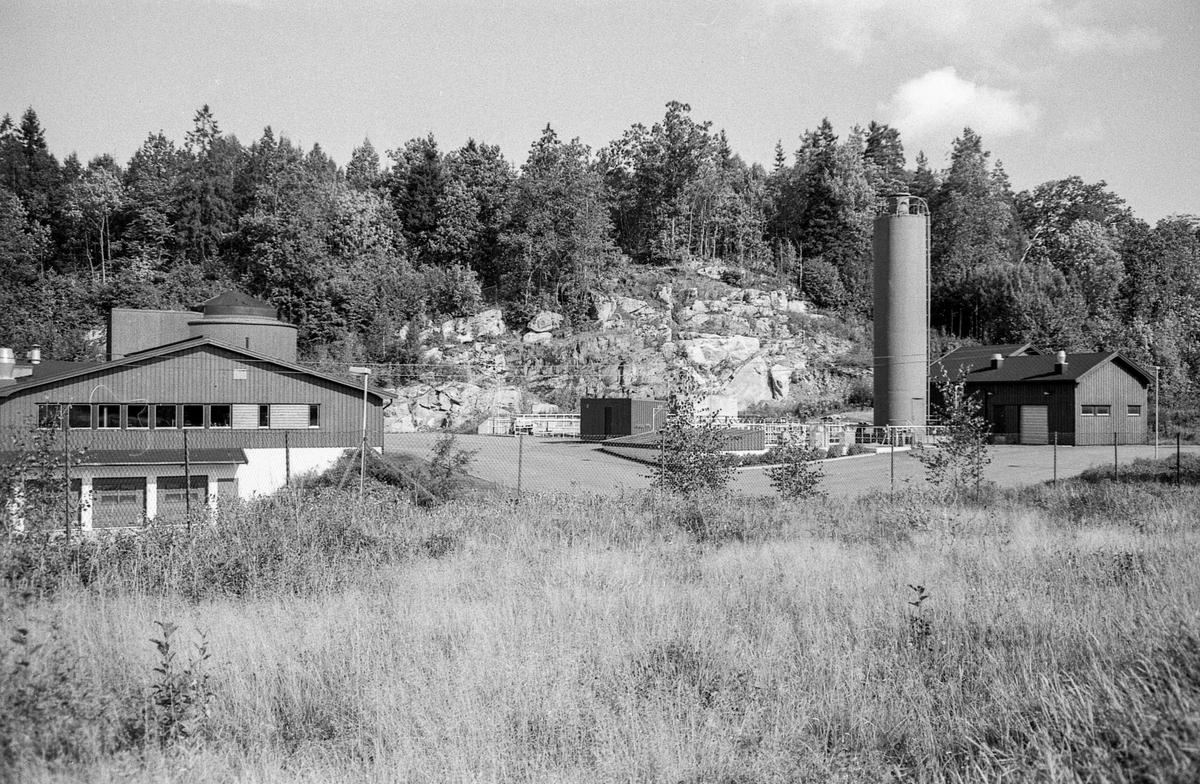 Stemningsbilder fra Hvitsten. Huset til Fred. Olsen med buet vindu bak trærne. Stabil Alna Malingfabrikk på odden.