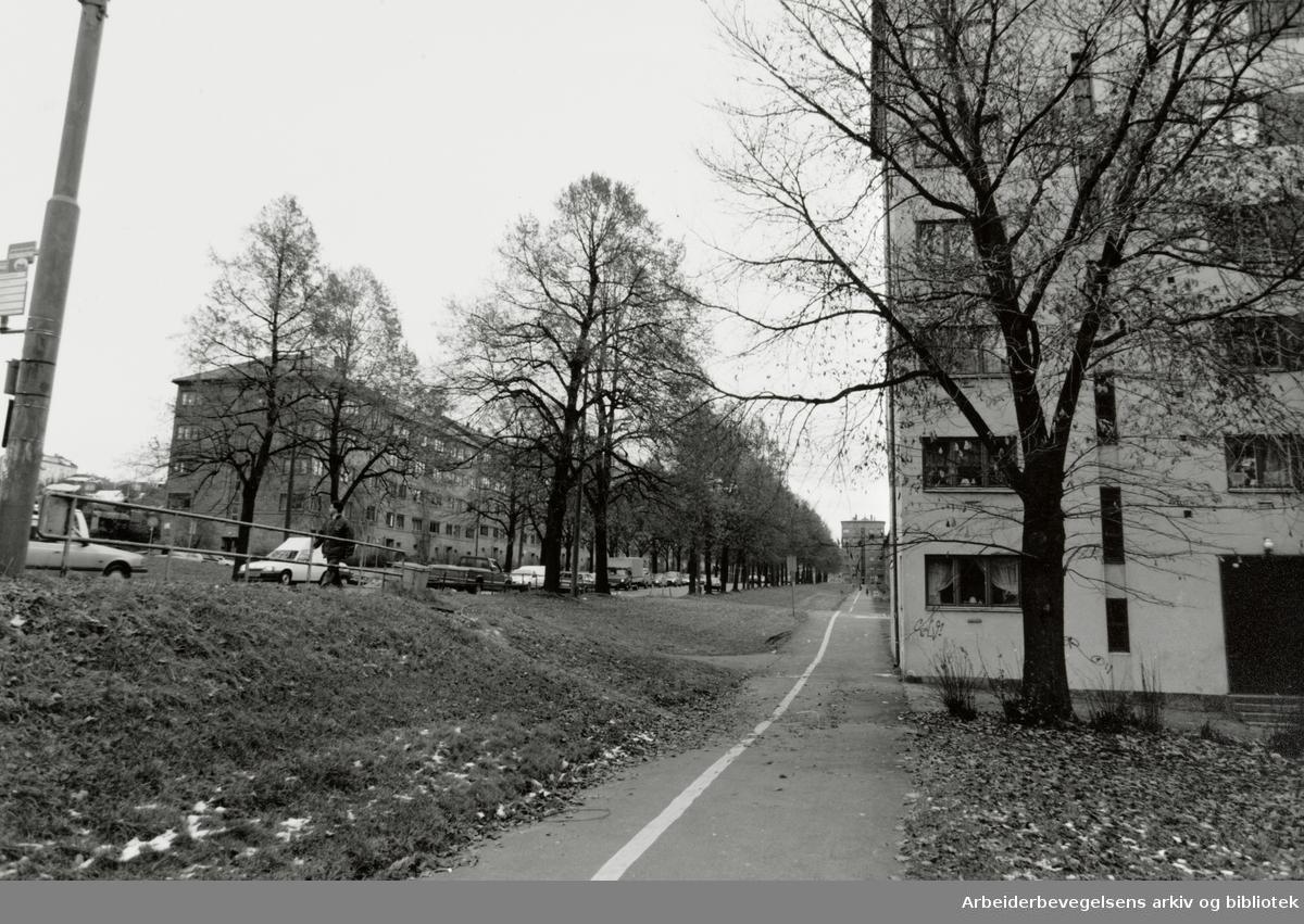 Christian Michelsens gate. November 1993