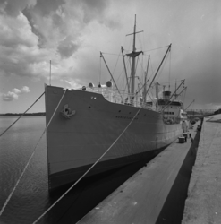Lastning av pappersmassa för export, fartyget Nordstjernan i
