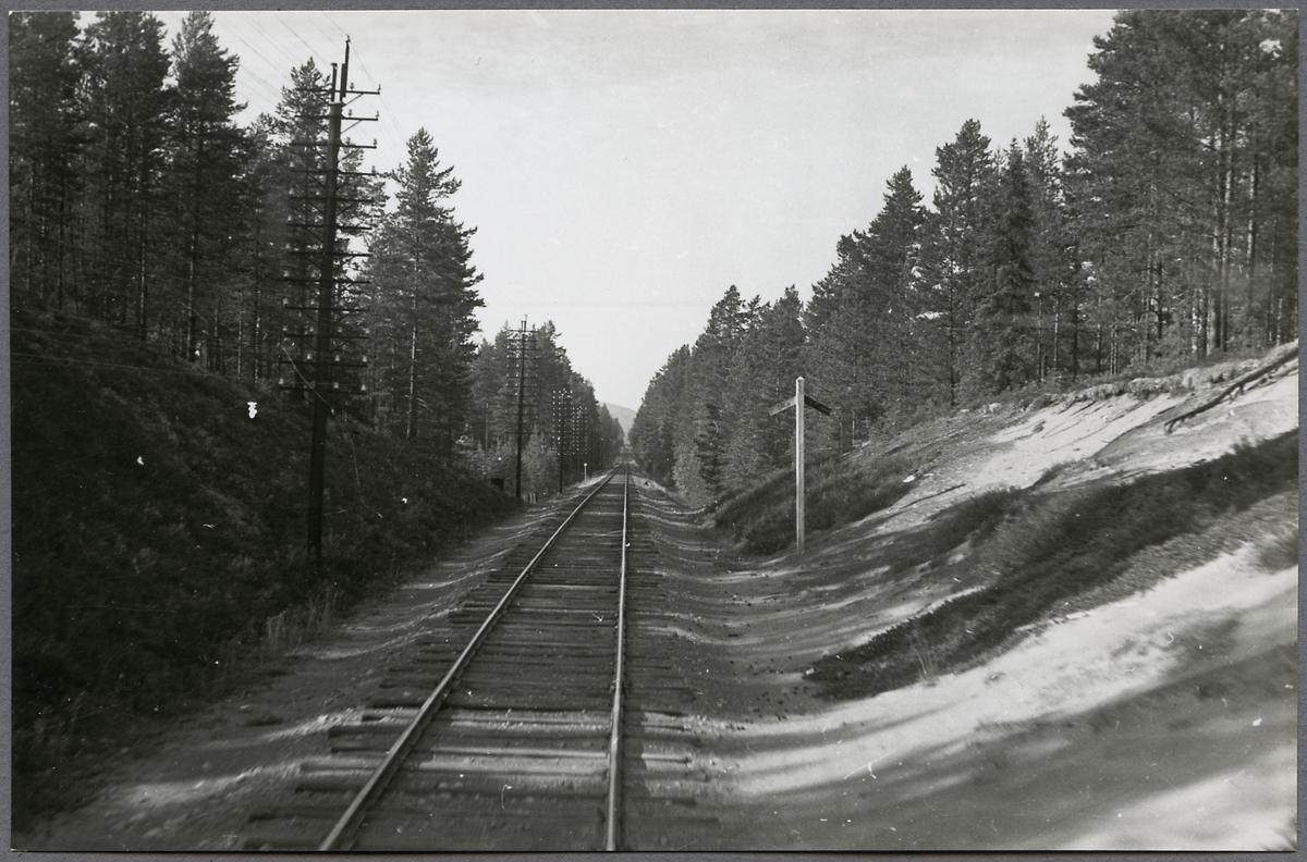 Motiv från sträckan Vansbro-Särna-Mora-Älvdalen.