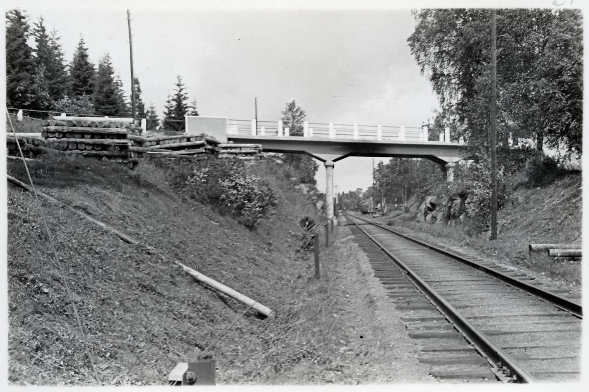 Viadukt vid Mariedamm.