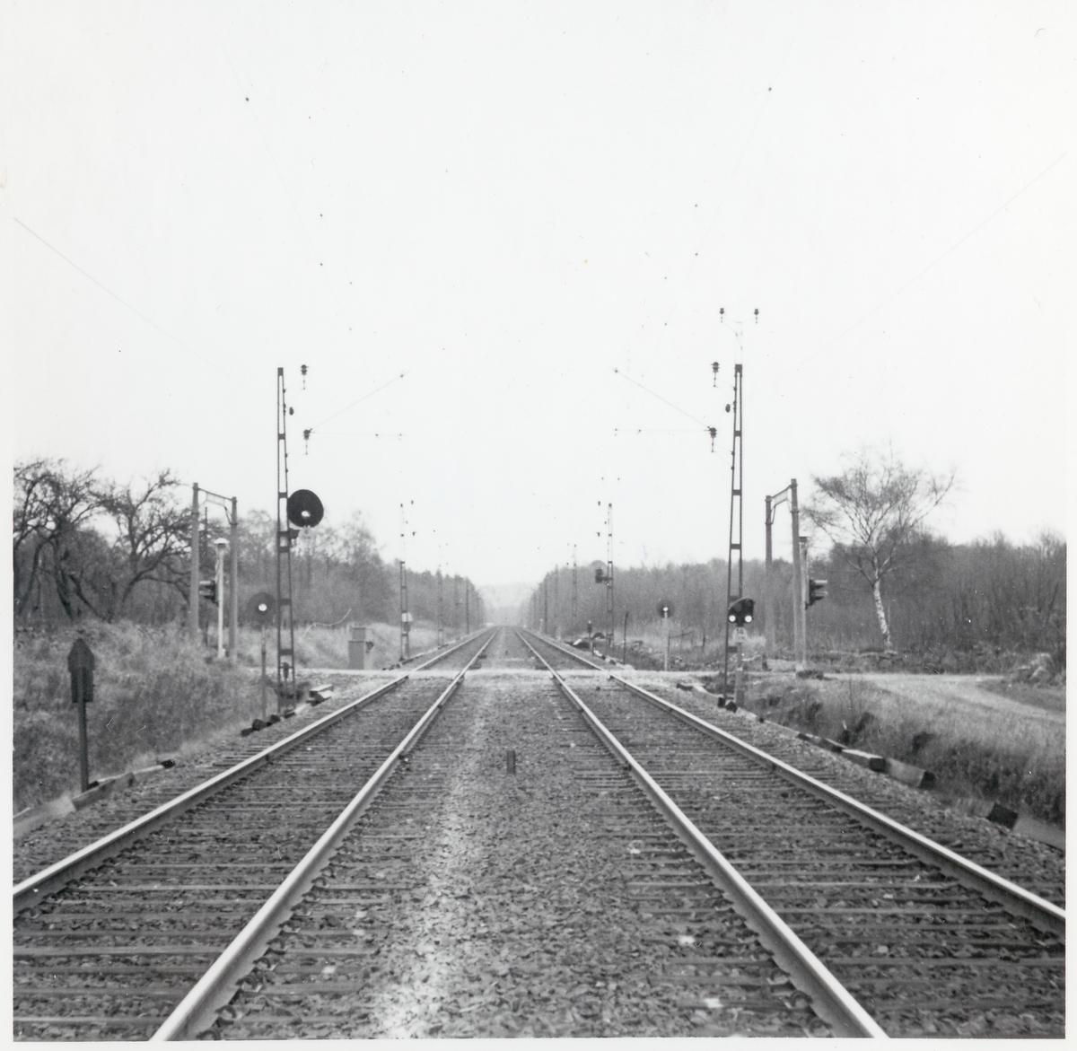 Plankorsning vid Ormanäs, på linjen mellan Höör och Stehag.